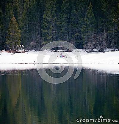 Picknick del invierno en a orillas del lago