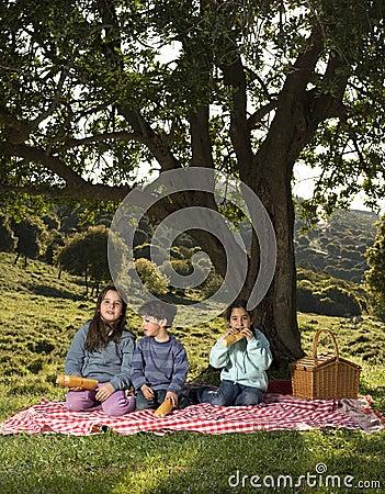 Picknick mit drei Kindern