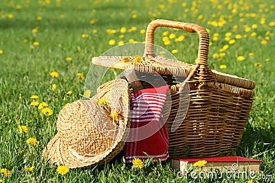 Picknick op het gras
