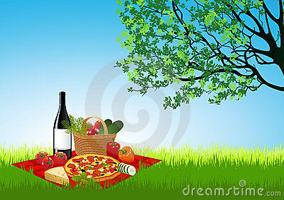 Picknick on summer field
