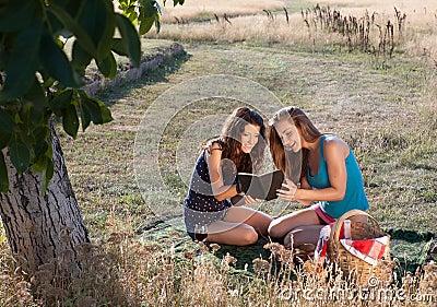 Picknick und gutes Buch