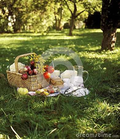 Free Picnic Stock Photography - 26766442