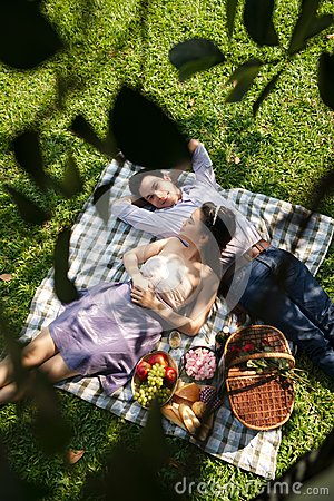 Free Picnic Royalty Free Stock Photography - 50769387