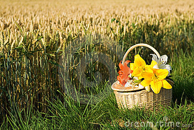 Picnic basket with bunch of flowers