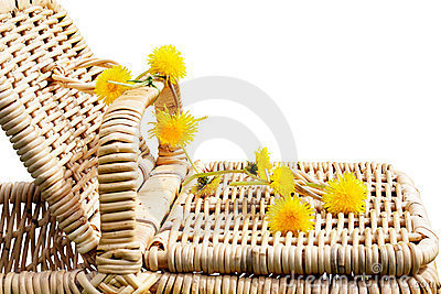 Picnic basket with dandelions