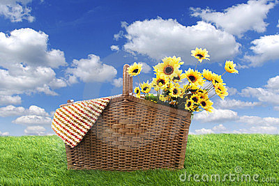 Picnic basket in the field