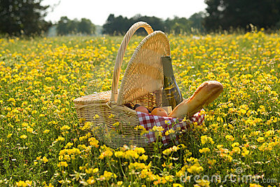 Picnic basket with wine, bread and fruits