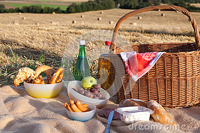 Picnic basket wit food and drinks on field