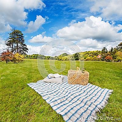 Picnic blanket & basket in sunny field