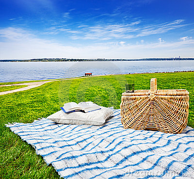 Free Picnic Blanket, Pillow & Basket Royalty Free Stock Photography - 20480837