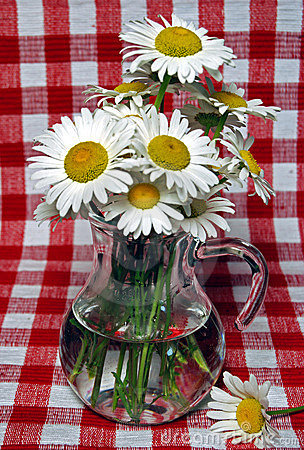 Free Picnic Bouquet Stock Photography - 5597282