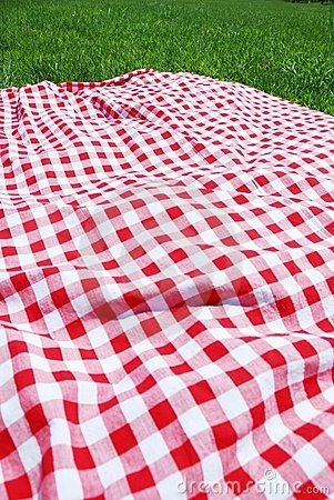 Picnic cloth on meadow.