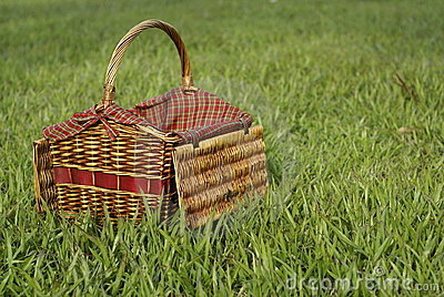 Picnic hamper in green grass