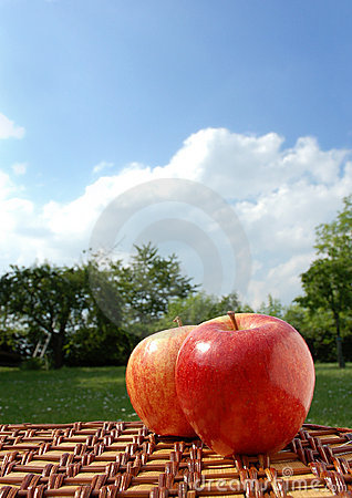 Free Picnic In The Park Royalty Free Stock Image - 2419116