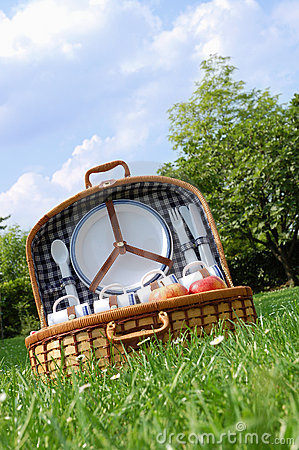 Free Picnic In The Park Royalty Free Stock Photography - 2419177