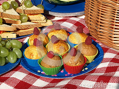 Picnic with muffins
