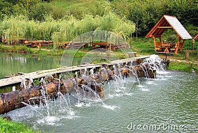 Picnic place near lake