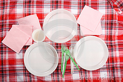Picnic. plate on the tablecloth