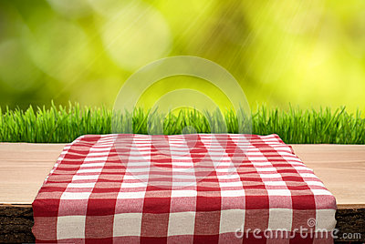 Picnic Table with cheched tablecloth