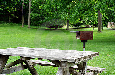 Picnic Table and Grill in Park