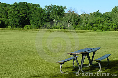 Picnic table, in the park