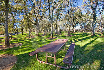 Picnic table in public park