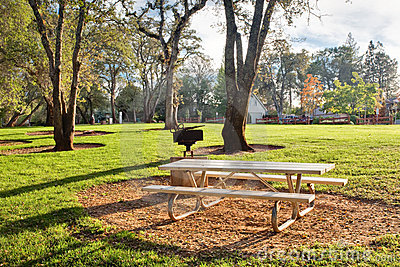 Picnic table in public park