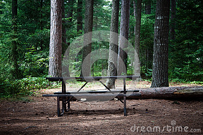 Picnic table in the wilderness