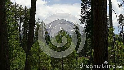 Pico del bosque y de montaña en el parque nacional volcánico de Lassen almacen de video