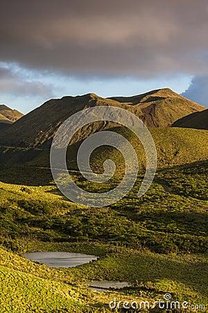 Pico Highlands