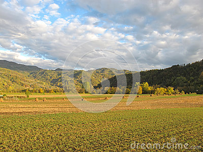 Pictorial golden autumn fields at sunset Stock Photo