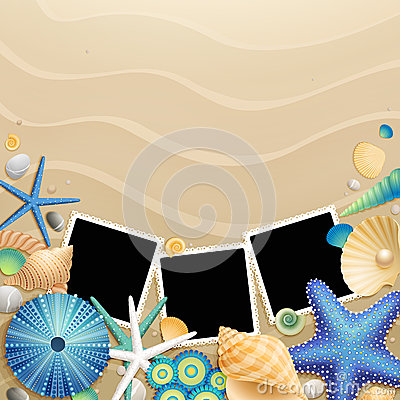 Free Pictures, Shells And Starfishes On Sand Background Stock Images - 24901284