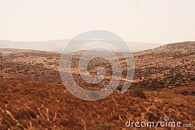 Picturesque ancient mountains