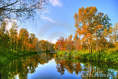 Picturesque autumn landscape of steady river and bright trees