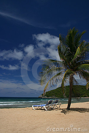 Free Picturesque Caribbean Beach Stock Image - 2933191