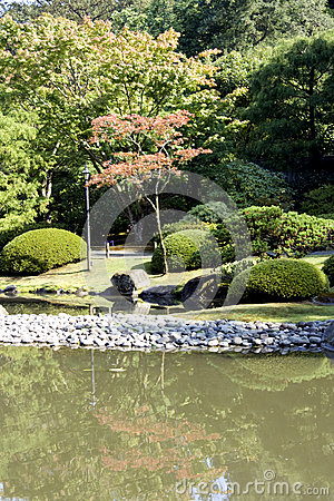 Picturesque Japanese garden with pond