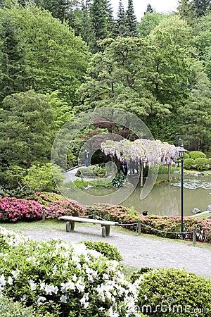 Picturesque Japanese Garden Editorial Stock Photo