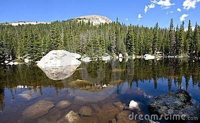 Picturesque lake and forest