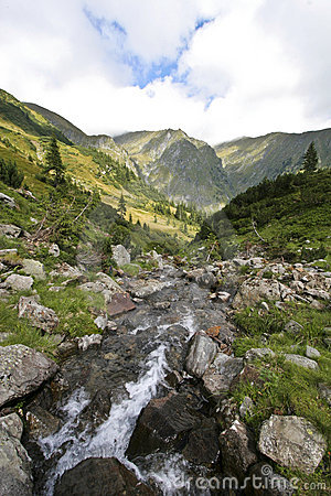 Picturesque mountain stream