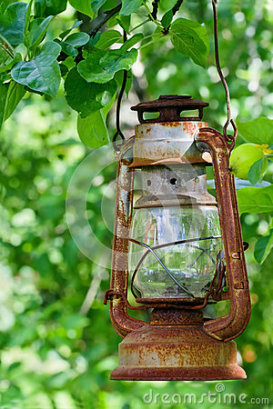 Picturesque oil lantern hanging in an apple tree