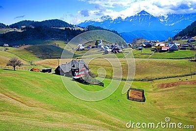 Picturesque spring landscape