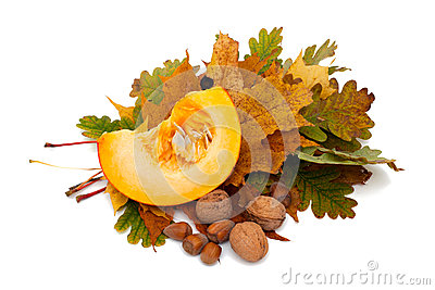Piece of pumpkin and nuts on autumn leafs
