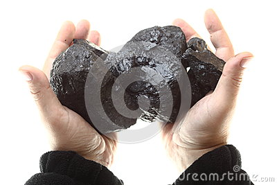 Pieces of coal in hand isolated on white background