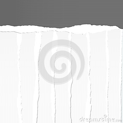 White Lined Paper Scrap Photo Image 8629230 – Vertical Lined Paper