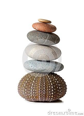 Piedras del zen y pilluelo de mar