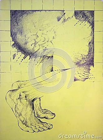 Pieds mâles anathomy