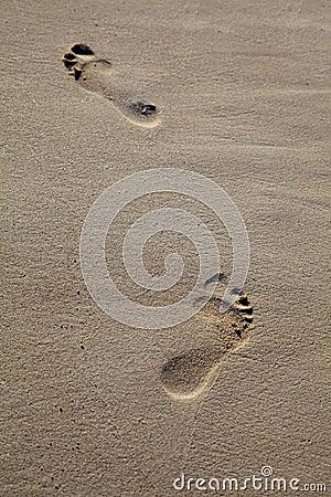Pieds marchant sur la plage