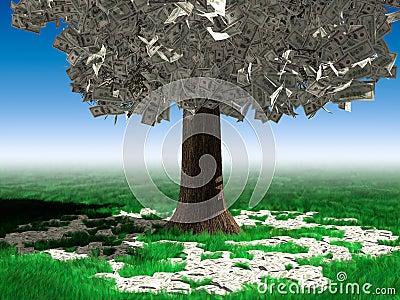 Pieniądze drzewo