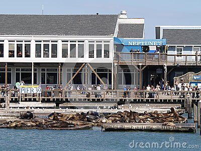 Pier 39 at San Francisco Bay Editorial Photo