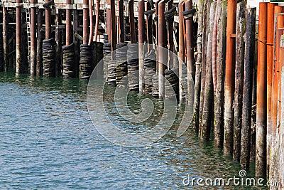 Pier Bumpers